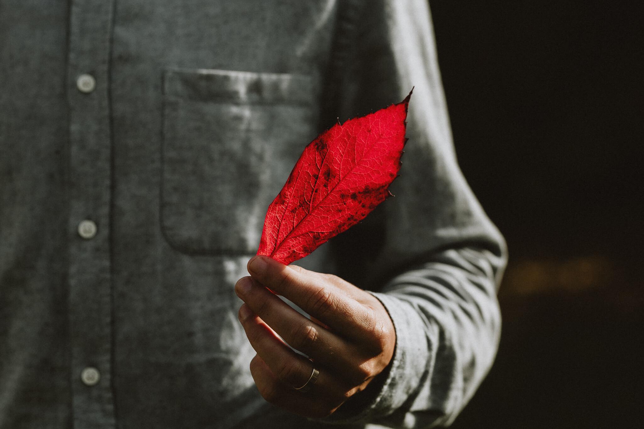 Punane sügisene leht mehe käes