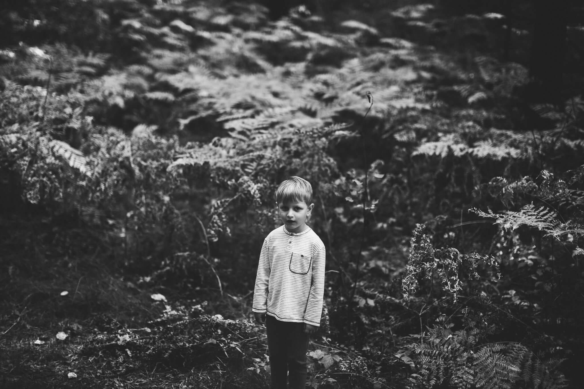 Portree väikesest poisist metsas keset sõnajalgu
